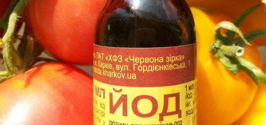 йод для помидор